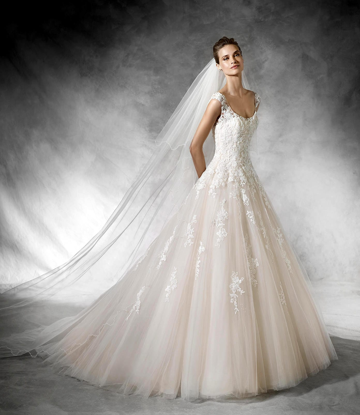 Pronovias bia dress and veil size 6uk sell my wedding for Selling your wedding dress