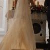 Backless Dress and Veil
