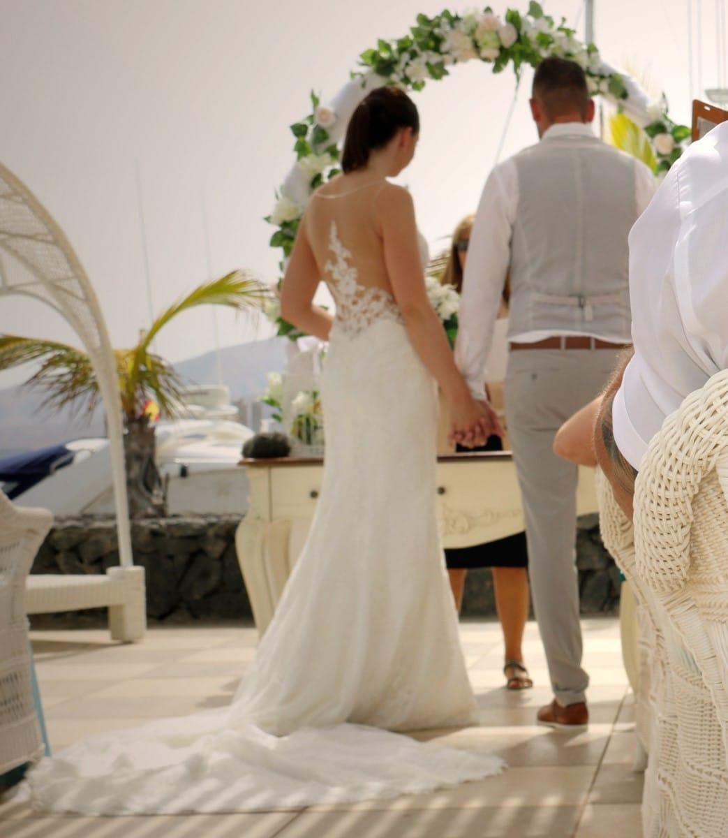 Pronovias Ileas Wedding Gown