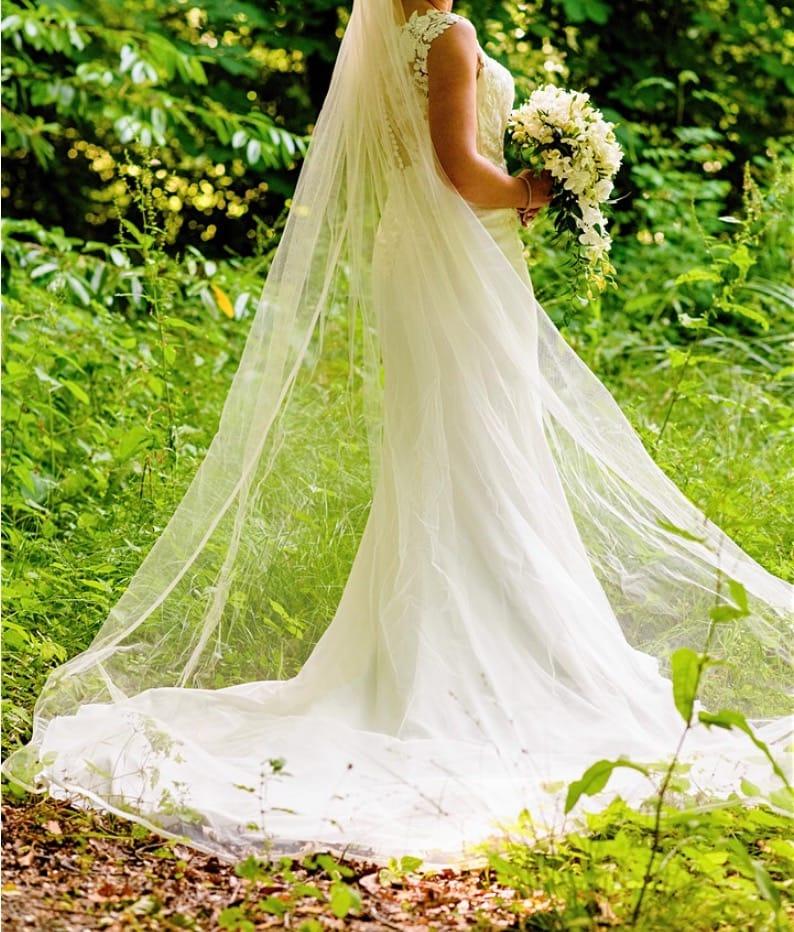 Pronovias Drail Gown