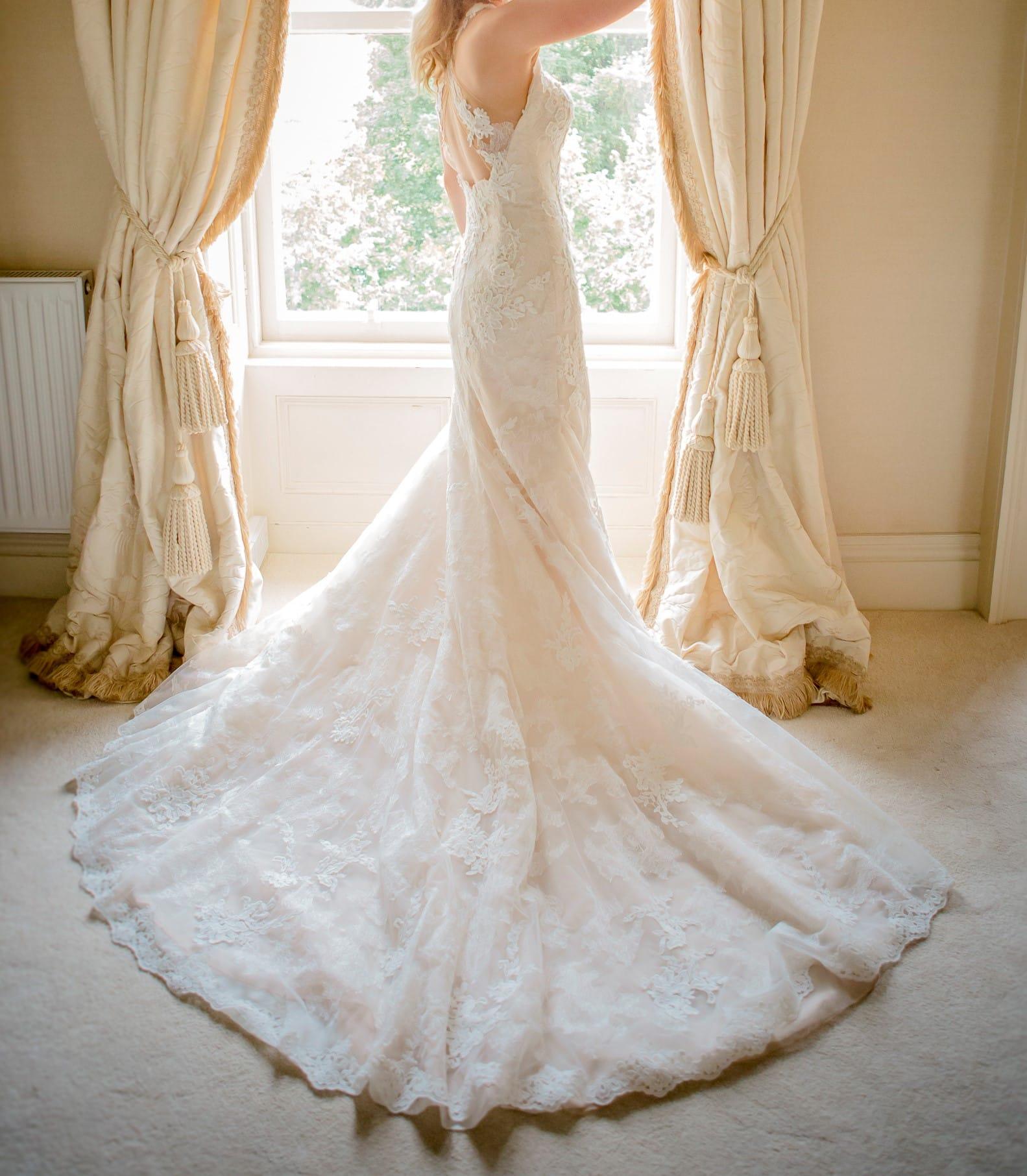 Pronovias Temis Beautiful Blush Lace Dress