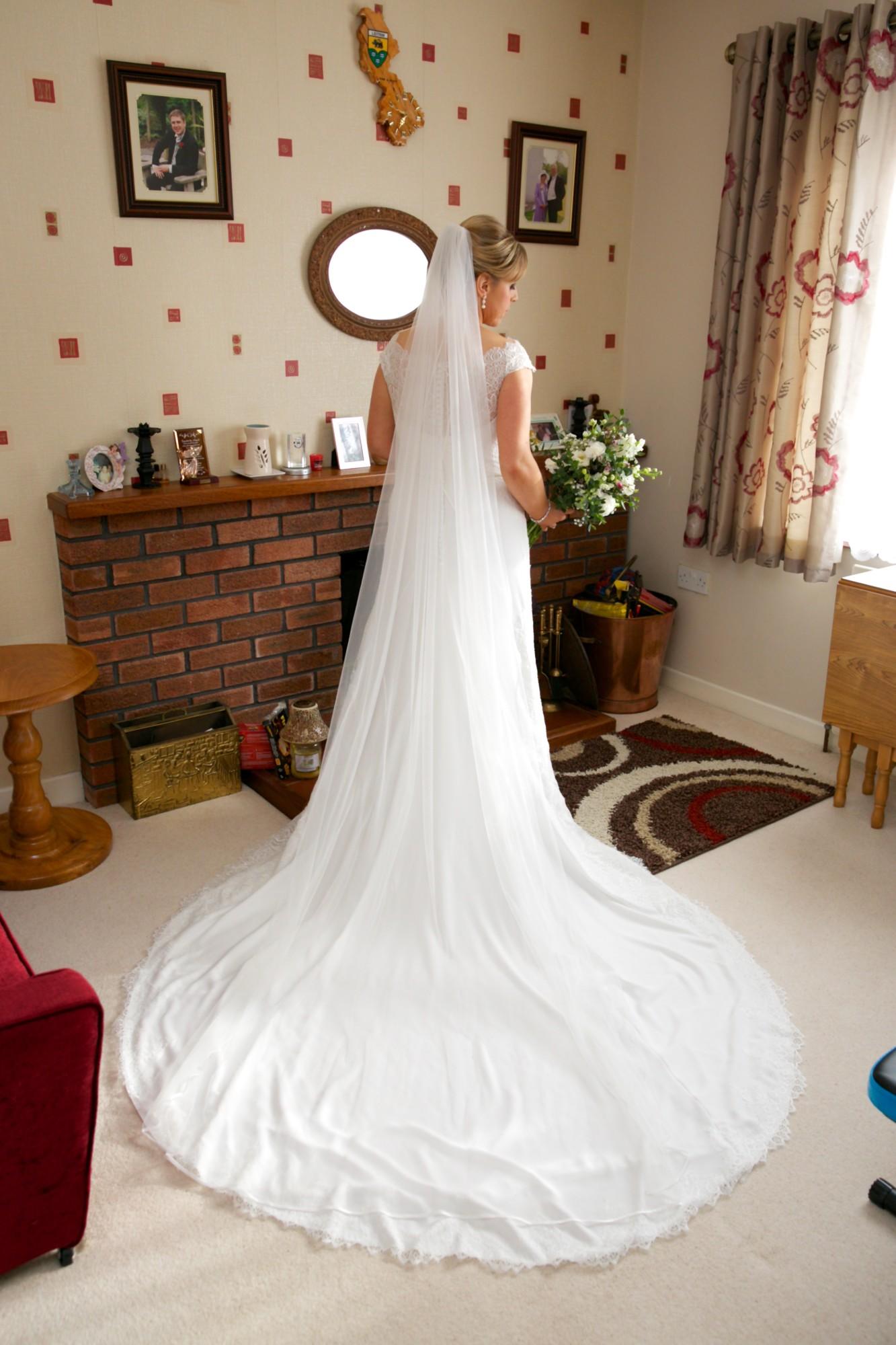Pronovias San Modena Wedding Dress