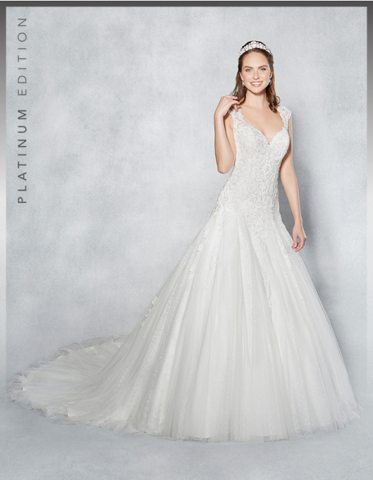 Platinum Edition Lucienne Gown
